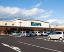 ハピーズ円山店(スーパー)まで229m