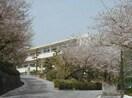 岡山市立妹尾中学校(中学校/中等教育学校)まで1069m