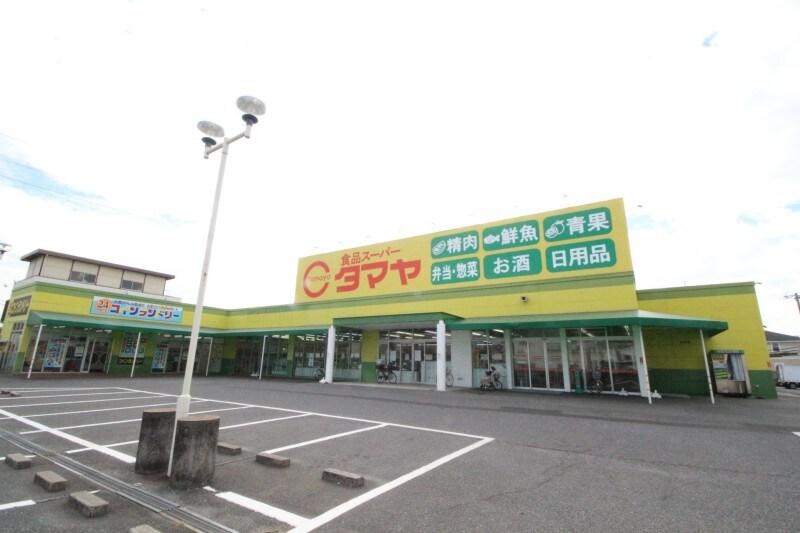 タマヤ 豊成店(スーパー)まで819m