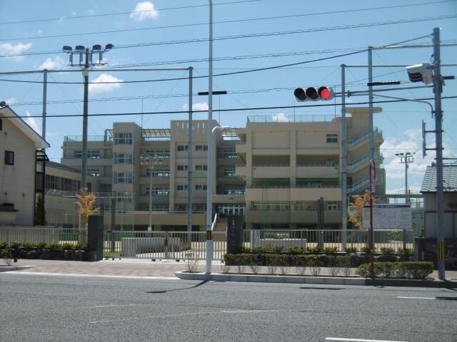 徳島市立沖洲小学校(小学校)まで607m