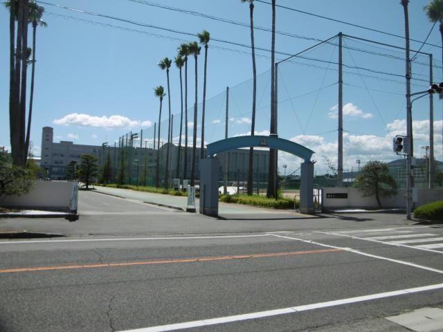 徳島市立高校(高等学校/高等専門学校)まで1568m