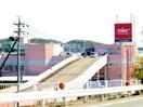 バロー星川(ショッピングセンター/アウトレットモール)まで3398m