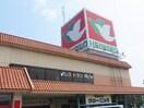 平和堂木之本店(スーパー)まで593m※平和堂木之本店