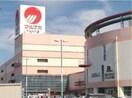 山陽マルナカマスカット店(スーパー)まで933m