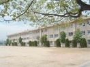 倉敷市立中島小学校(小学校)まで529m