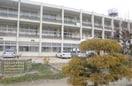 倉敷市立大高小学校(小学校)まで515m