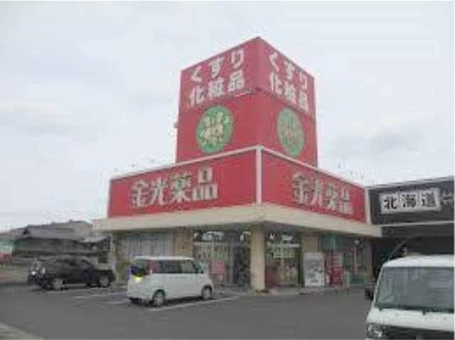 金光薬品東塚店(ドラッグストア)まで658m