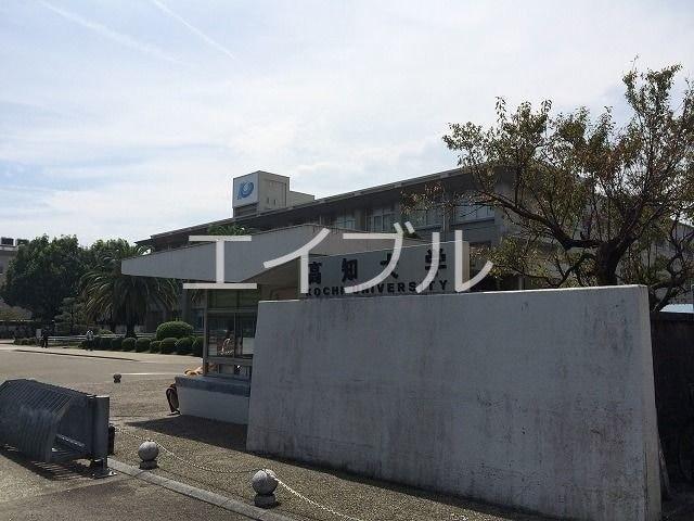 国立高知大学(大学/短大/専門学校)まで701m