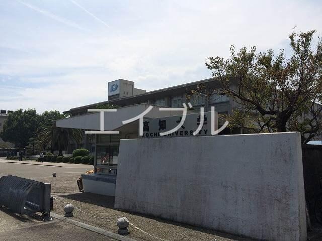 国立高知大学(大学/短大/専門学校)まで186m