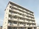 高知市電ごめん線・伊野線/東工業前駅 徒歩2分 4階 築33年の外観