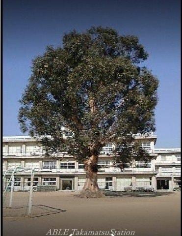高松市立牟礼小学校(小学校)まで358m