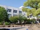 高松市立太田小学校(小学校)まで396m