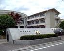松山市立城西中学校(中学校/中等教育学校)まで483m