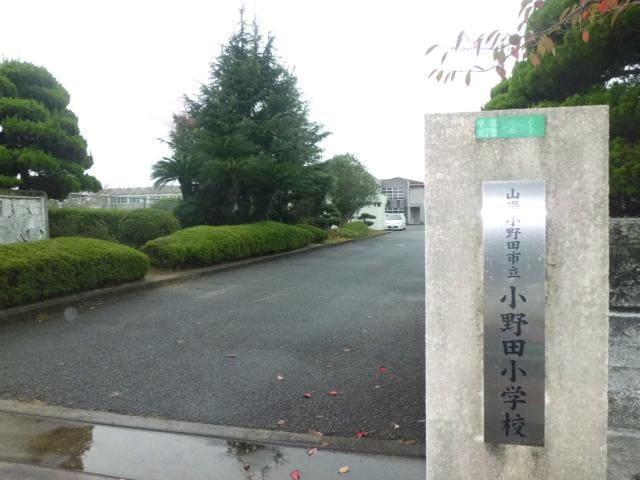 山陽小野田市立小野田小学校(小学校)まで1375m