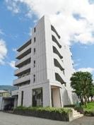 御殿場線(静岡県内)/御殿場駅 徒歩18分 5階 築17年の外観