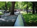 永山記念公園(公園)まで909m