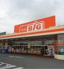 ザ・ビッグ 石和店(スーパー)まで316m