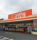 ザ・ビッグ 石和店(スーパー)まで906m