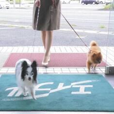 エイブルネットワーク浜松南店の内観写真